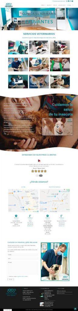clinica veterinaria cervantes2